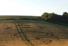 Crop Circle at The Forests Way, Nr Roydon, Essex, United Kingdom. Reported 24th July 2016