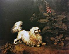 George Stubbs British, 1724–1806 Lady Archer's Maltese Terrier…