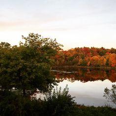 It's starting to feel a lot like fall (in New England!) #Massachusetts #Fall #Beauty #Leaves #WeekendAdventure #Travel #Wanderlust