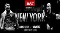 What time Live coverage UFC 205 Alvarez versus McGregor Live Stream