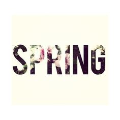 Shop Spring's Biggest Trends ❤ liked on Polyvore featuring text, words, phrase, quotes and saying