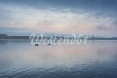 Deutschland, Baden-Württemberg, Landkreis Konstanz, Moos, Morgenstimmung vor Sonnenaufgang mit Blick über den Bodensee zum Radolfzeller Ufer