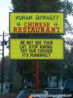 We not see your cat. Stop asking. Try our chicken, it's purrrfect.