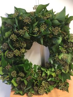 Krans van klimop Christmas Rock, Christmas Flowers, Green Christmas, Xmas Wreaths, Door Wreaths, Real Flowers, Diy Flowers, Shabby Chic Kranz, Deco Floral