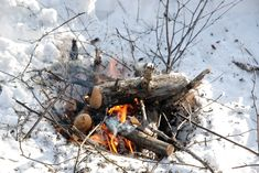 Need To Make Fire But Don't Want To Be Seen? Here's How To Make Smokeless Fire - The Good Survivalist