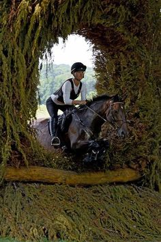 SRB Equestrian Lesson or Course Walk Auction Items, Equestrian, Walking, Horses, Animals, Jogging, Animais, Animales, Animaux