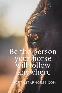 always learning - Horses Funny - Funny Horse Meme - - always learning Terminator Funny Terminator Funny Meme goals for 2019 and beyond The post always learning appeared first on Gag Dad. The post always learning appeared first on Gag Dad. Funny Horse Memes, Funny Horses, Cute Horses, Pretty Horses, Beautiful Horses, Beautiful Cats, Equine Quotes, Equestrian Quotes, Equestrian Problems