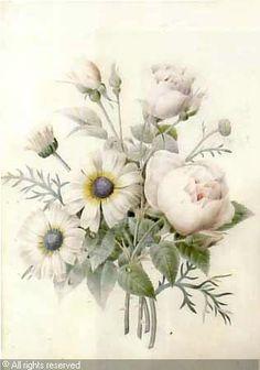 Jetée de fleurs, aquarelle attribué à Pierre-Joseph Redouté