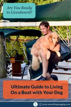 Boat life is great. Do you know everything you need to do it successfully with your dog? Sailboat Living, Living On A Boat, Dogs On Boats, Buy A Boat, Best Boats, Dog Anxiety, Kinds Of Dogs, Training Your Dog, Health And Safety