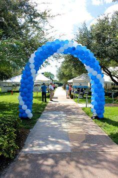 #Balloons #Balloons #Balloons @Lynn University! #blue #white