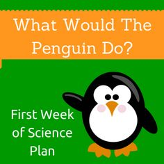 Starting the Year Off Right: Science Ideas for Week One — The Science Penguin
