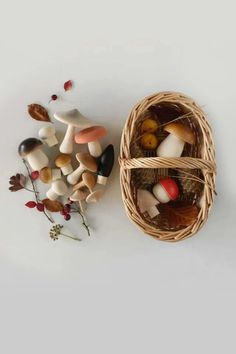 Beautifully made wooden mushrooms in a cute handmade rattan basket. YAdorable for imaginary play and decoration. Made in Germany 15 mushrooms in solid beech wood rattan basket Wooden toy for toddler pretend play, montessori toy, nature play Diy Sensory Board, Basket Lighting, Rattan Basket, Toy Basket, Wood Toys, Wooden Baby Toys, Wooden Toys For Toddlers, Handmade Wooden Toys, Forest Friends