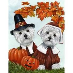 Precious Pet Paintings 3.33-Ft X 2.33-Ft West Highland Terrier Thanksg