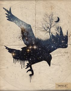 I chose this picture for a pet I wish I had. It makes me sad how most people look at crows at dangerous and scary. Crows are very intelligent, and very loyal. They never forget a face or voice. I chose the picture because it kinda chimes into my love for space and the night, and the art feel to it.