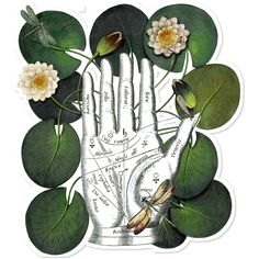 Adesivo Dragonfly's Fortune de @lagostadesregrada | Colab55 #adesivosimpressos #vinil #verde #flores #libelulas