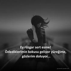 Ey rüzgar sert esme! Özlediklerimin kokusu geliyor yüreğime, gözlerim doluyor...  #sözler #anlamlısözler #güzelsözler #özlüsözler #alıntı #alıntılar #alıntıdır #alıntısözler #rüzgar #özlem #yürek #gözler