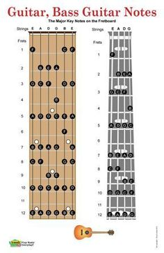 """The Guitar and Bass Guitar Fretboard Poster includes a guitar fretboard and a bass fretboard with the major notes for the first 12 frets on each. The sharps and flats have been left out to make the fret board a little easier to read. This easy to see poster is a great reference for the beginner or intermediate guitar player."""