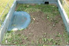 Tortoise+Habitat+Ideas   ... Pen latest Update - Tortoise Forum - Tortoise Husbandry Community