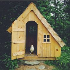 """onceuponawildflower: """"How cool is this """" Backyard Farming, Chickens Backyard, Red Roof House, Hen House, Country Farm, Country Life, Farm Projects, Mini Farm, Cabin Design"""