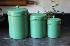 I wish...never would I spend $125 on canisters...but so cute! I bet I could make some other ones look like this with paint cuz i am crafty like that :)