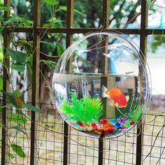Acrylic Fish Bowl Wall Hanging Aquarium
