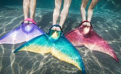 """This is a monofin. Pretty sure I could SCUBA just as well with one of these as with my two ugly black fins. I NEED A MERMAID MONOFIN ASAP. (No, this is not a """"want"""" it is a DEFINITIVE **NEED!**)"""