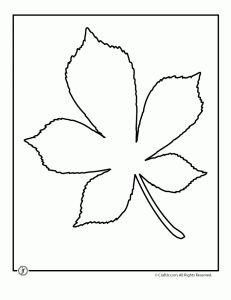 Dibujo de hoja de árbol