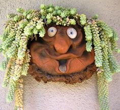 """Whimsical Troll Planter brings a boring wall alive with character! Wall pocket planter with one-of-kind expression in warm terra-cotta is ideal for succulents, miniature plants, flowers or air plants. Indoors or out, planter hangs securely with nail or screw, shown with donkey's tail for the look of dreads! Plants not included. Measures 11"""" x 9"""" x 7"""" Item Weight 3.2 lb. Material: Clay/Pottery Handcrafted USA"""