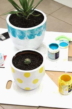 DIY Polka Dots : DIY Polka Dot Painted Pot