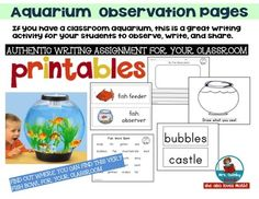 Aquarium Observation- Writing for Primary Learners by MrsQuimbyReads | Teachers Pay Teachers