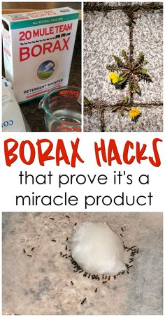 11 borax hacks that prove it's a miracle product! Borax uses, benefits to we… 11 borax hacks that prove it's a miracle product! Borax uses, benefits to weeds, ants, etc! Borax Cleaning, Household Cleaning Tips, Deep Cleaning Tips, Toilet Cleaning, House Cleaning Tips, Natural Cleaning Products, Cleaning Hacks, Diy Hacks, Cleaning Wipes