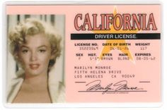 Marilyn driver's license