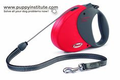 Training your dog doesn't require a lot of fancy training equipment, but one thing which requires careful attention is the choice of your dog's training collar. Leash Training, Training Collar, Training Your Dog, Training Equipment, Collars, Dogs, Necklaces, Doggies, Workout Equipment