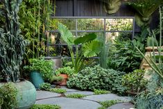 Urban Garden Design Australian garden of Sean Cook uses a mirror to increase the sense of space and reflect light. Image by Daniel Shipp - The lush inner city garden of leading Sydney florist, Sean Cook of Mr Cook. Veg Garden, Lush Garden, Shade Garden, Garden Plants, Urban Garden Design, Amazing Gardens, Beautiful Gardens, Melbourne Garden, Shower Plant
