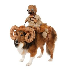 AmazonSmile : Star Wars Bantha Costume for Pets : Adult Sized Costumes : Pet Supplies