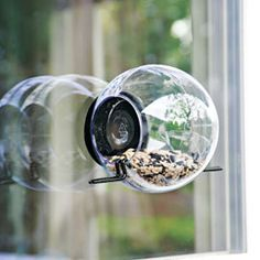 My loves would LOVE this!! I need to get one or make one.  Welcome feathered friends to dine at your fly-up window. Window Bird Feeder is fun to watch.