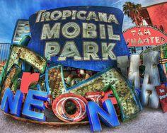 Las Vegas Neon Boneyard by McKenna