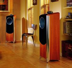 The beautiful and now discontinued Tannoy speakers that I wish Stereo Passion International could still sell !!