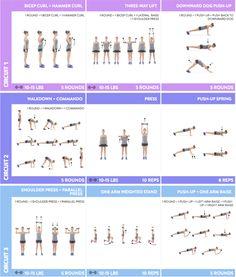 Anna Victoria Fit Body Guide (FBG)