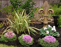 New Orleans Style Backyard Garden - traditional - landscape - houston - Stewart Land Designs Cabbage Flowers, Outdoor Topiary, Ornamental Cabbage, Raised Bed Garden Design, Mediterranean Home Decor, Tuscan Decorating, Decorating Ideas, Custom Pools, Traditional Landscape