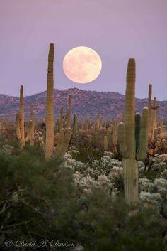 Super Moon over Arizona 2016