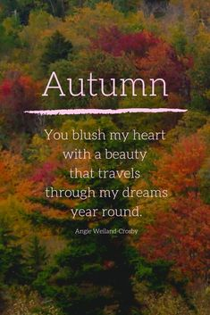 Inspirational Artwork, Inspirational Nature Quotes, Meaning Of Autumn, Beautiful Places Quotes, Beautiful Pictures, Leaf Quotes, Tree Quotes, Travel Picture, Dr Seuss