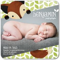 Cuddly Critter: Bright Green - Boy Photo Birth Announcements in Bright Green   Mikan Ink