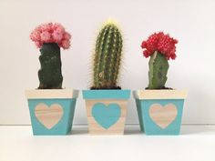A super simple DIY for an adorable lil trio of succulent planters. Free tutorial with pictures on how to make a vase, pot or planter in under 10 minutes by decorating with acrylic paint and plant pots. How To posted by Mandy P // Fabric Paper Glue. Cactus Plante, Decorated Flower Pots, Cement Pots, Cactus Y Suculentas, Painted Pots, Plant Decor, Diy Flowers, Garden Pots, House Plants