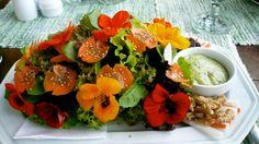 Nasturtium salad presentation