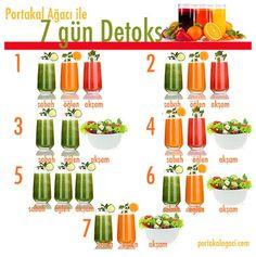 Portakal-ağacı-detoks – Diyet Yemekleri – The Most Practical and Easy Recipes 3 Day Detox, Sports Food, Food Tags, Homemade Beauty Products, Detox Recipes, Vegan Recipes, Detox Drinks, Diet And Nutrition, Orange
