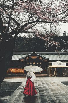 Yasukuni Shine (Yoshiro Ishii)