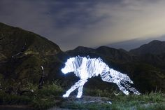 Darius Twin's lone wolf, light sculptures using LED lights and long exposure photography