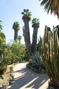 JOELIX.com   Botanical garden in Valencia Spain