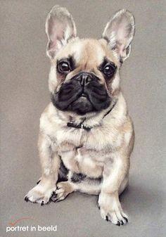 portretinbeeld-hond-1.jpg 433×619 pixels